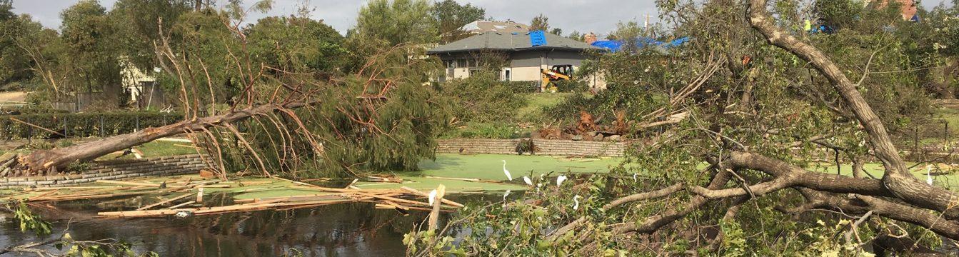 Dallas Tornado Clean Up